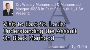 Understanding the Assault on Black Manhood by Dr. Wesley Muhammad